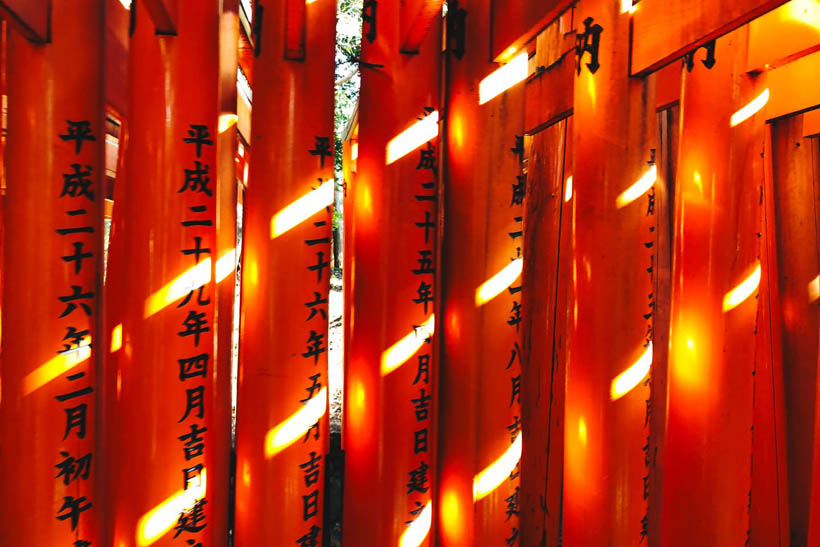 The morning sun shining on a couple of red torii gates at the Fushimi Inari Shrine in Kyoto, Japan.