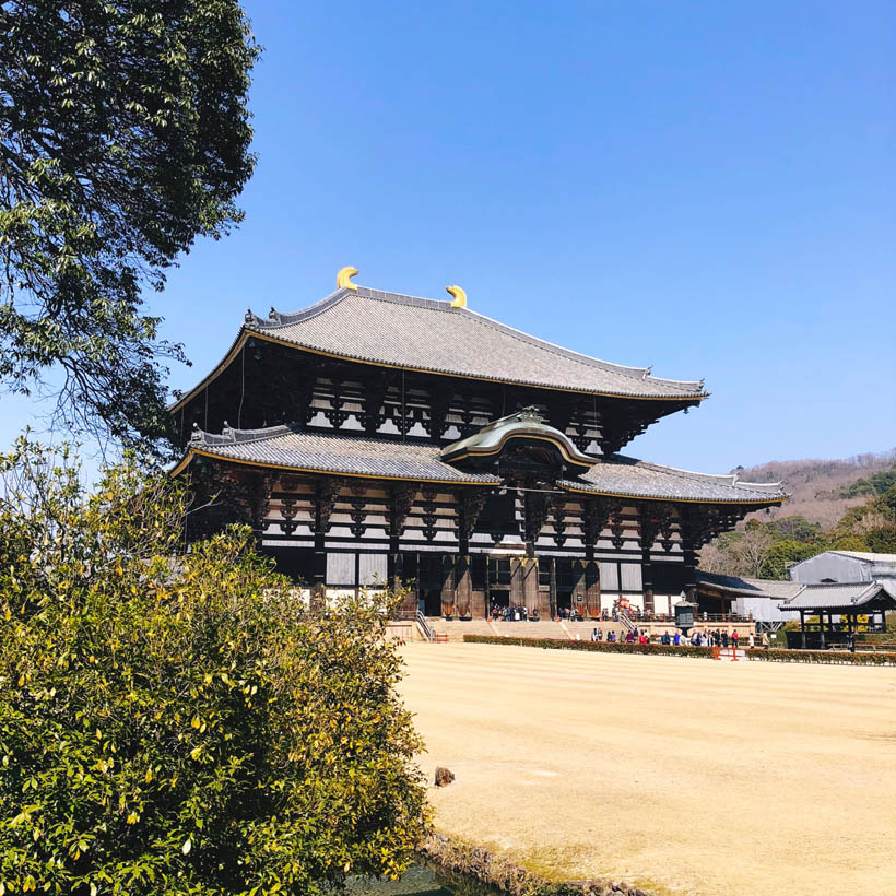 The Daibutsuden hall. Even at a distance it's already gigantic.