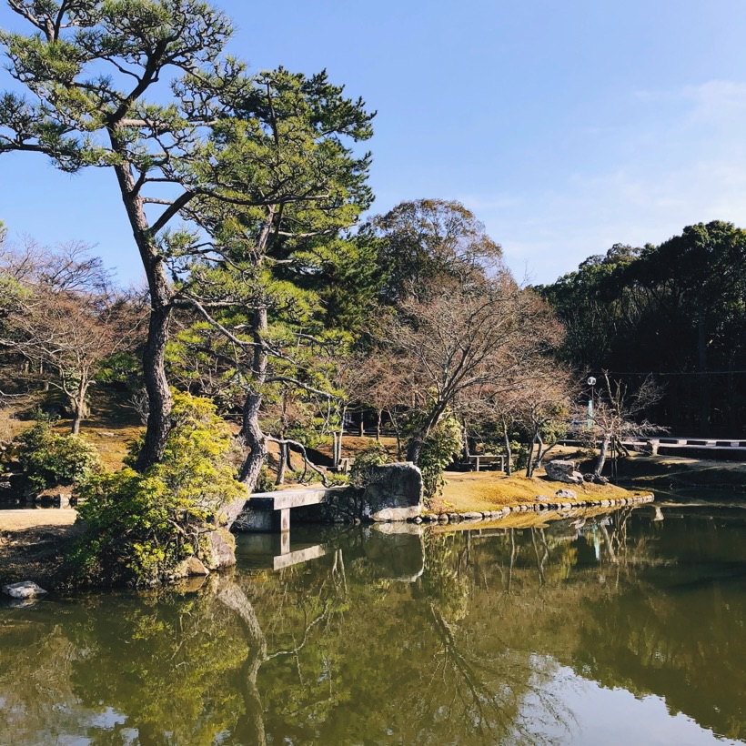 One of the many ponds in Nara Park.