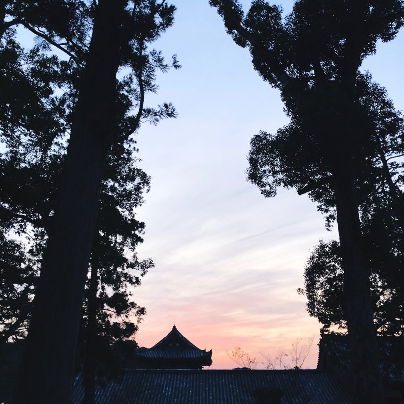 Sunset at the Todaiji temple.
