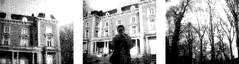 Three pictures taken with a Game Boy Camera: a mansion, my girlfriend in front of a mansion, and trees.