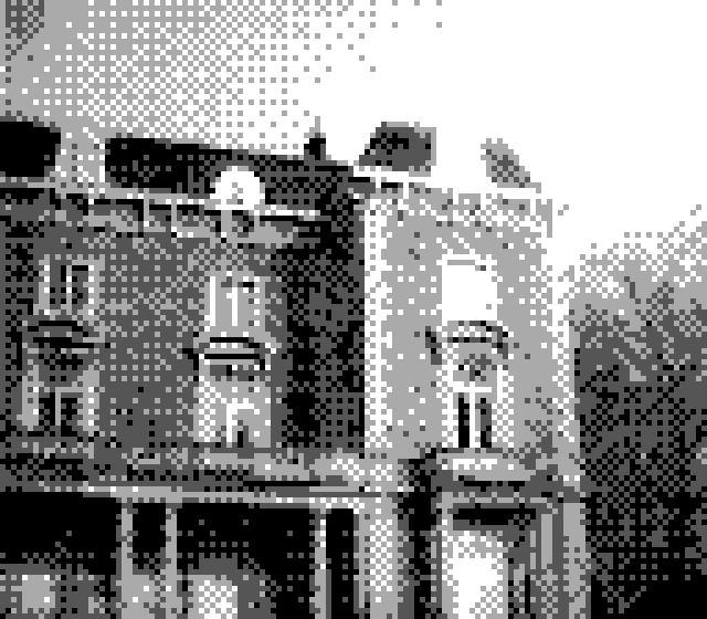 Out and about with a Game Boy Camera