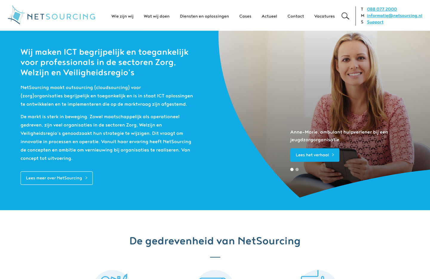 Netsourcing (development of website)